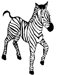 Drawing of a zebra.
